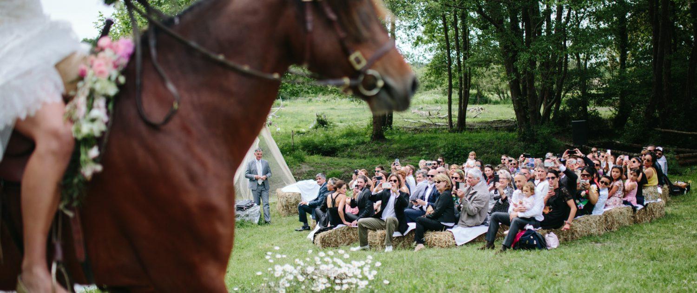 cheval avec couronne de fleurs arrivée à la cérémonie laïque